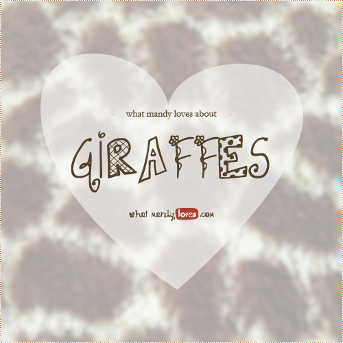 List: What Mandy Loves About Giraffes via www.whatmandyloves.com